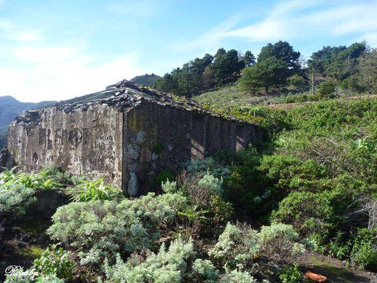 _Caserio de Talavera - Ramon