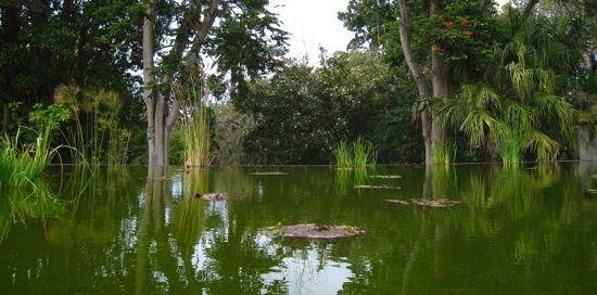 _Jardin Botanico - Kristel