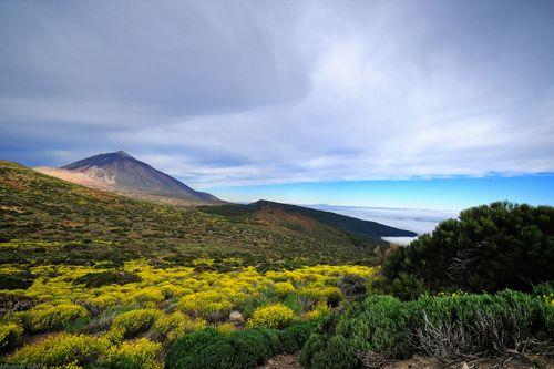 _Parque Nacional del Teide - Pedro Lopez