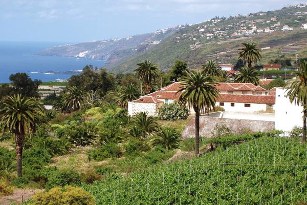 municipios SantaUrsula