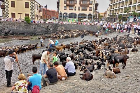 Baño de las Cabras, Día San Juan – Puerto de la Cruz
