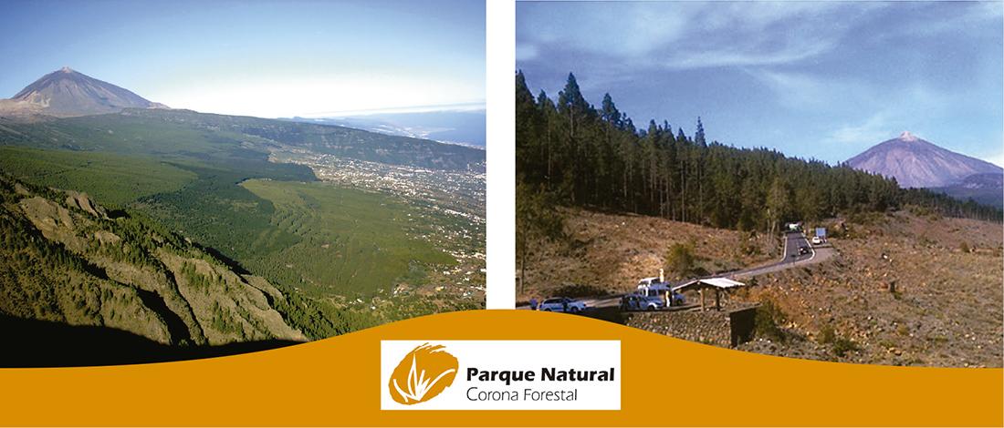 Parque Natural de La Corona Forestal, Tenerife, canarias, revista de ocio, turismo, Vive el Norte