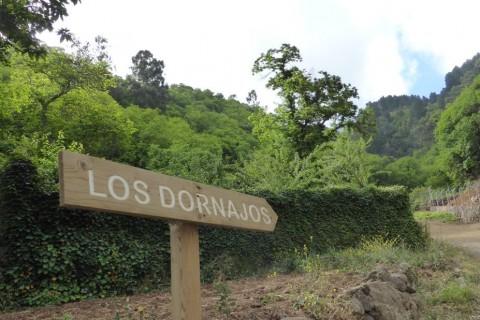 Los Dornajos