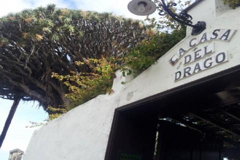 Casa del Drago – Icod de los Vinos