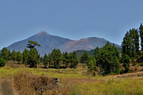 Vistas al Teide – El Tanque