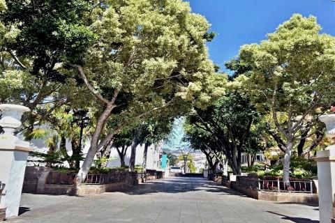 Parque – Santa Ursula
