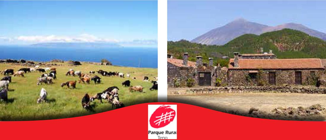 Parque rural de Teno, Tenerife, norte, revista de ocio, Canarias, Vive el Norte